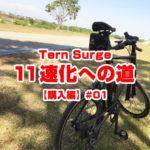 Tern Surge11速化への道【購入編】#01